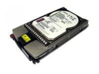 HP EVA 300GB 15K FC Add on HDD (416728-001)